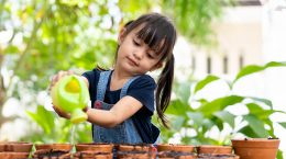 A child waters several plants in small pots