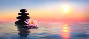 Zen Concept, Photo of spa stones and waterlily Lake